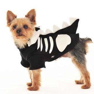 Black Dragon Costume #dogcostume #halloween