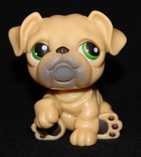 Littlest Pet Shop Dog Bulldog 107 with Hat Accessory Authentic Lps Exclusive
