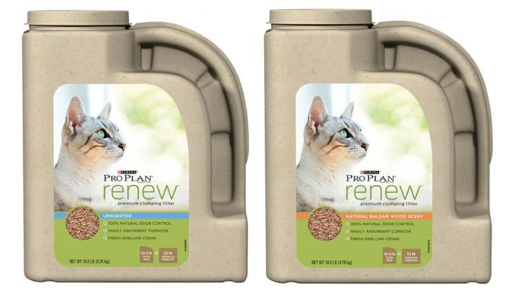 photo relating to Cat Litter Printable Coupons known as Nestles sustainable kitty-clutter jug is the cats meow