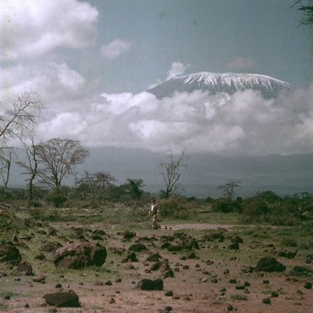 EH-C00274T Ernest Hemingway standing with Mount Kilimanjaro in the distance, Africa, circa 1953-1954.