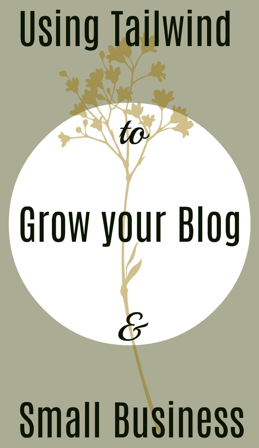 Why You Should Be Using Tailwind For Pinterest Aye Lined Uk Scottish Beauty Lifestyle Blog Pinterest Small Business Small Business Help Small Business Marketing