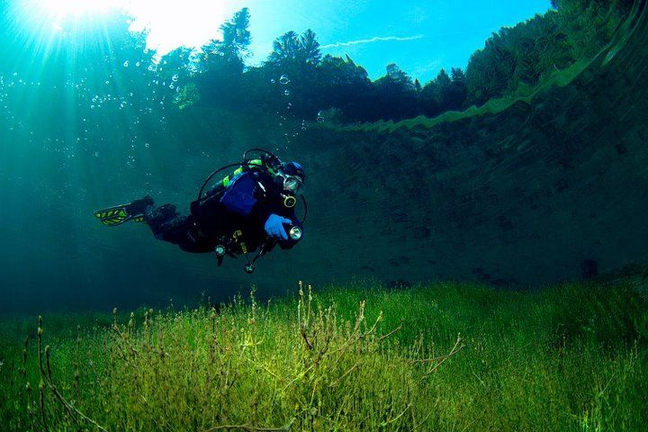 underwater park - green lake in tragoess, styria