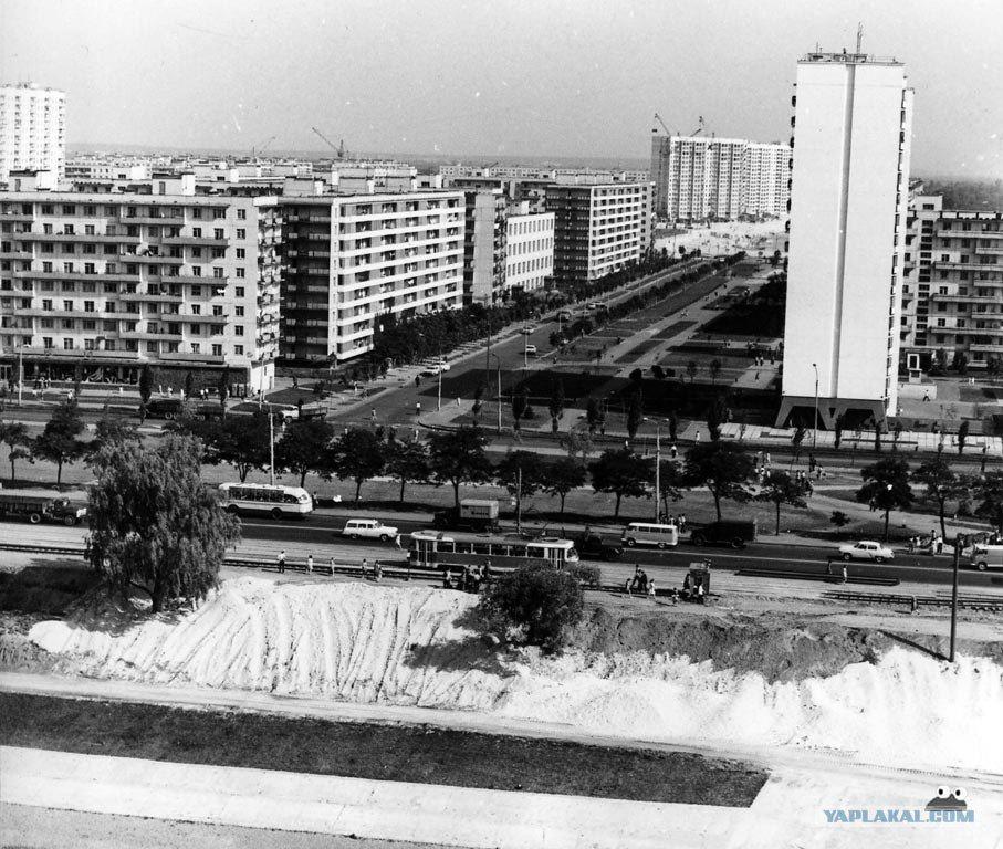 Березняки в районе улицы Амвросия Бучмы (июнь 1972 р.)