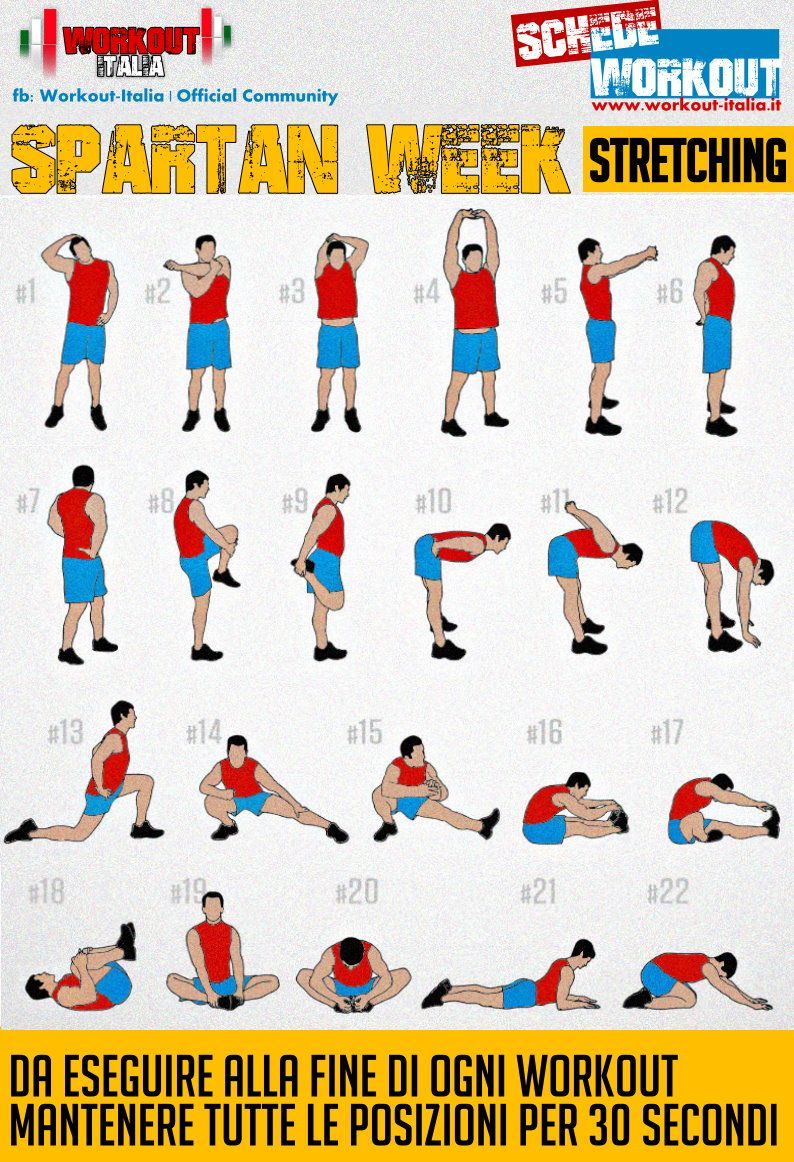 Scheda Stretching Exercises Pinterest Fitness Exercise And