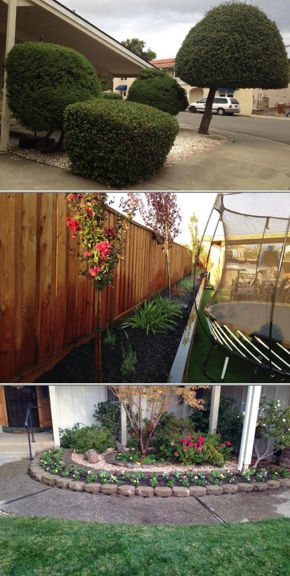 Quality Gardening And Landscaping Martinez Ca