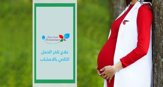 علاج تاخر الحمل الثاني بالاعشاب أفضل الطرق الطبيعية التي تزيد من فرص الحمل Sehajmal