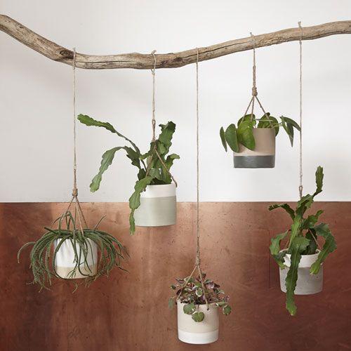 pot de fleur 224 suspendre en c 233 ramique 2 couleurs h 252 bsch styling photography plantes