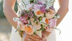 Different, but beautiful...pink, purple, orange, and white,cabbage rose, wax flower, gooseneck, loosestrife