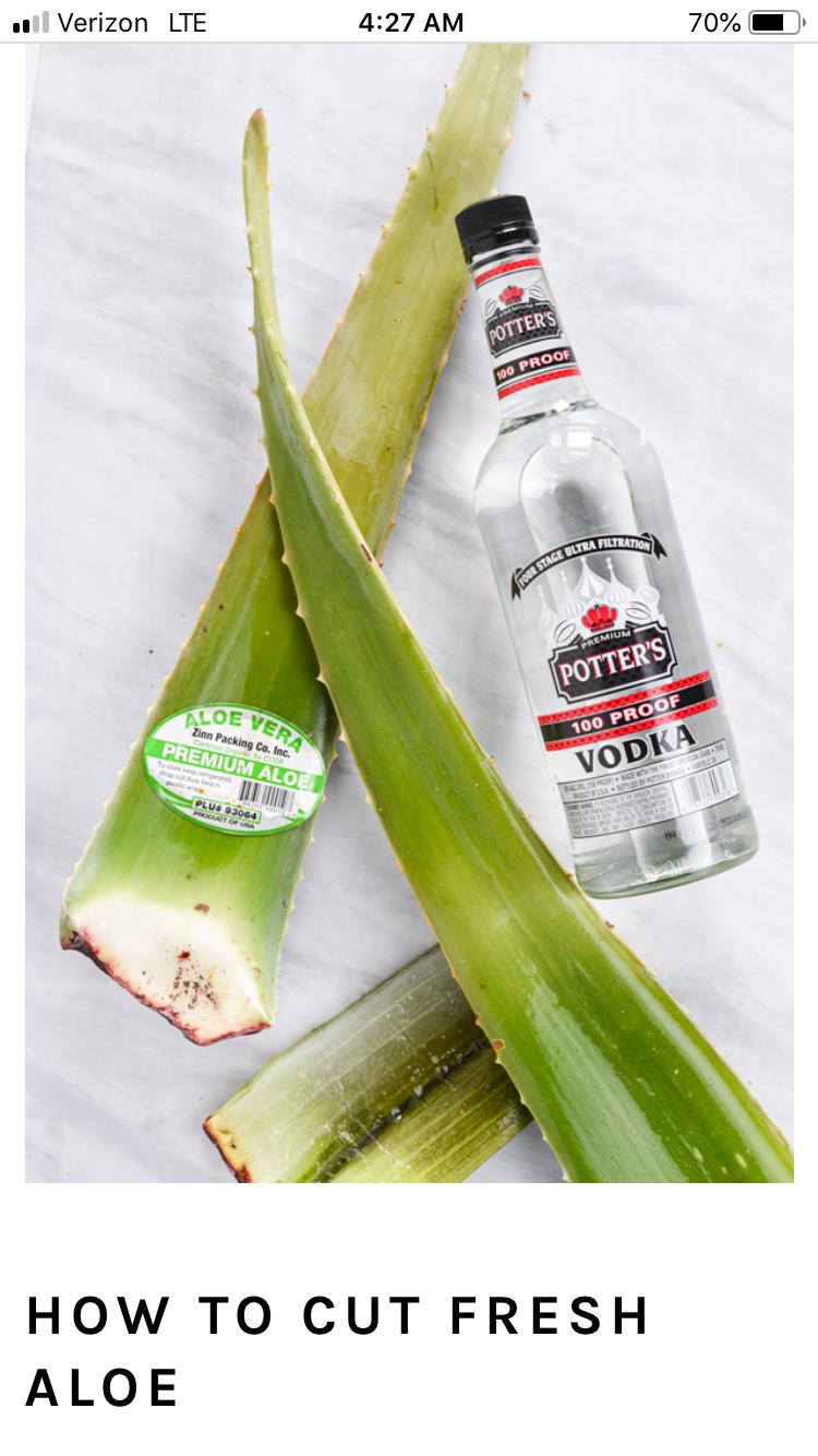 Fresh Aloe Vera + Vodka Hand Sanitizer Recipe in 2020
