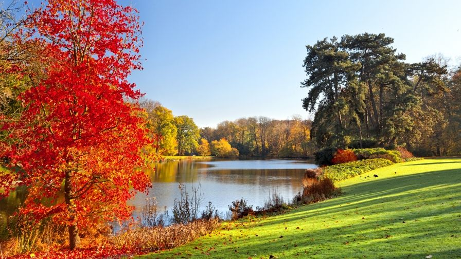 Beautiful Natural Scene Hd Free Download Wallpapers Digital Photography Backdrops Photography Backdrops Autumn Scenery
