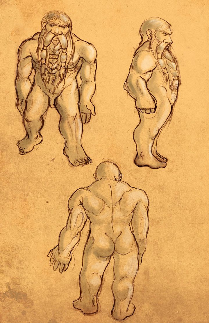 89ab1c28b68e0 anatomy study -dwarf man by  iara-art on deviantART