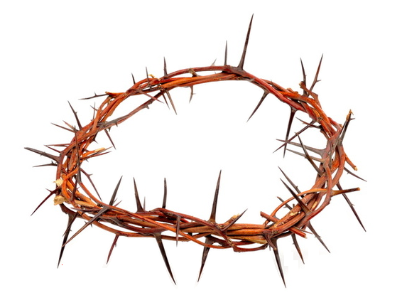 A Crown Of Thorns Png 566 429 Carving Flowers Crown