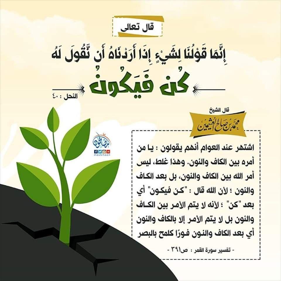 Pin By Iman Yousef On سورة النحل Cool Words Words Quran Tafseer