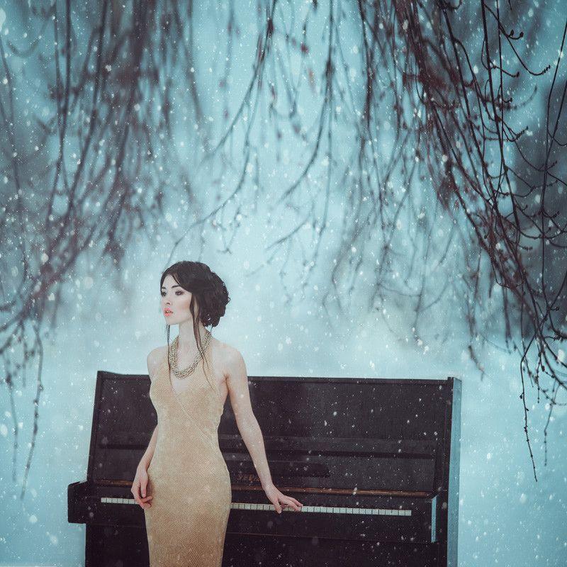Photograph Winter Symphony by Anita Anti on 500px