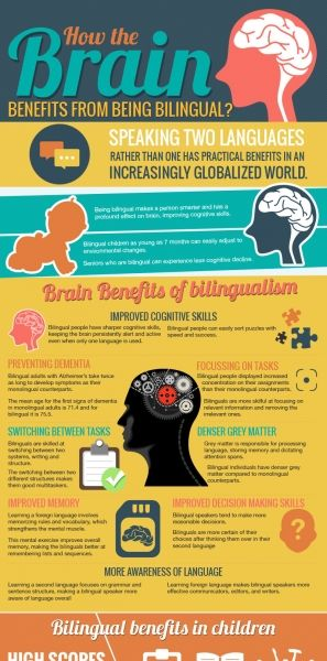 Bilingualism: The New Anti-Aging Secret for Your Brain?