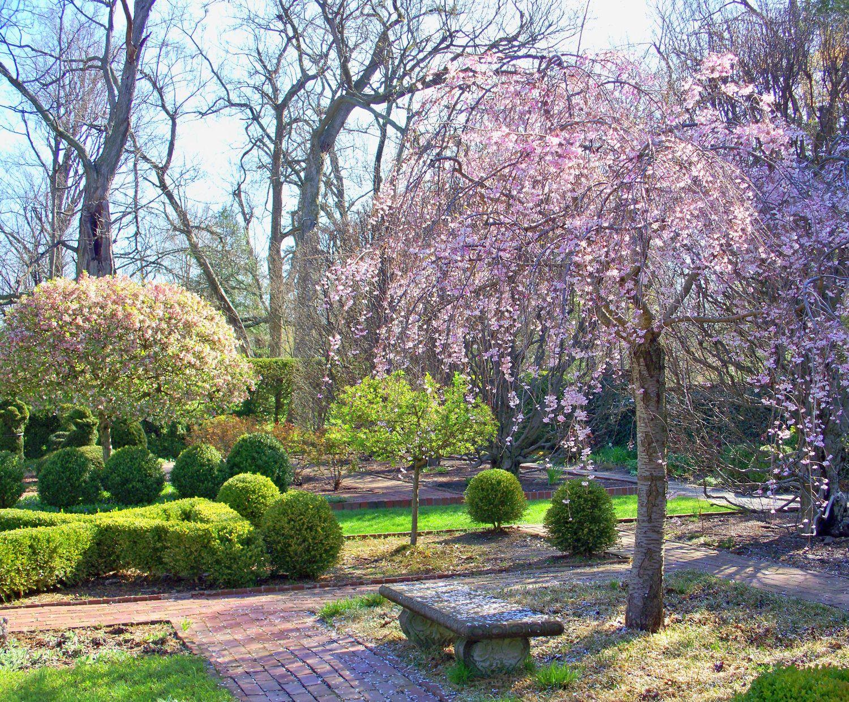 Ashland Estate Garden Lexington Kentucky Estate Garden Garden