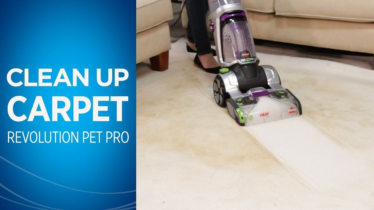 Deep cleaning with theproheat 2x revolution pet pro