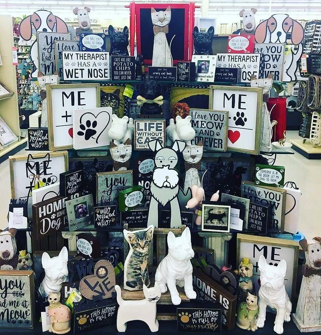 Pin De Jesimara Rasera Em Pet Shop Cais