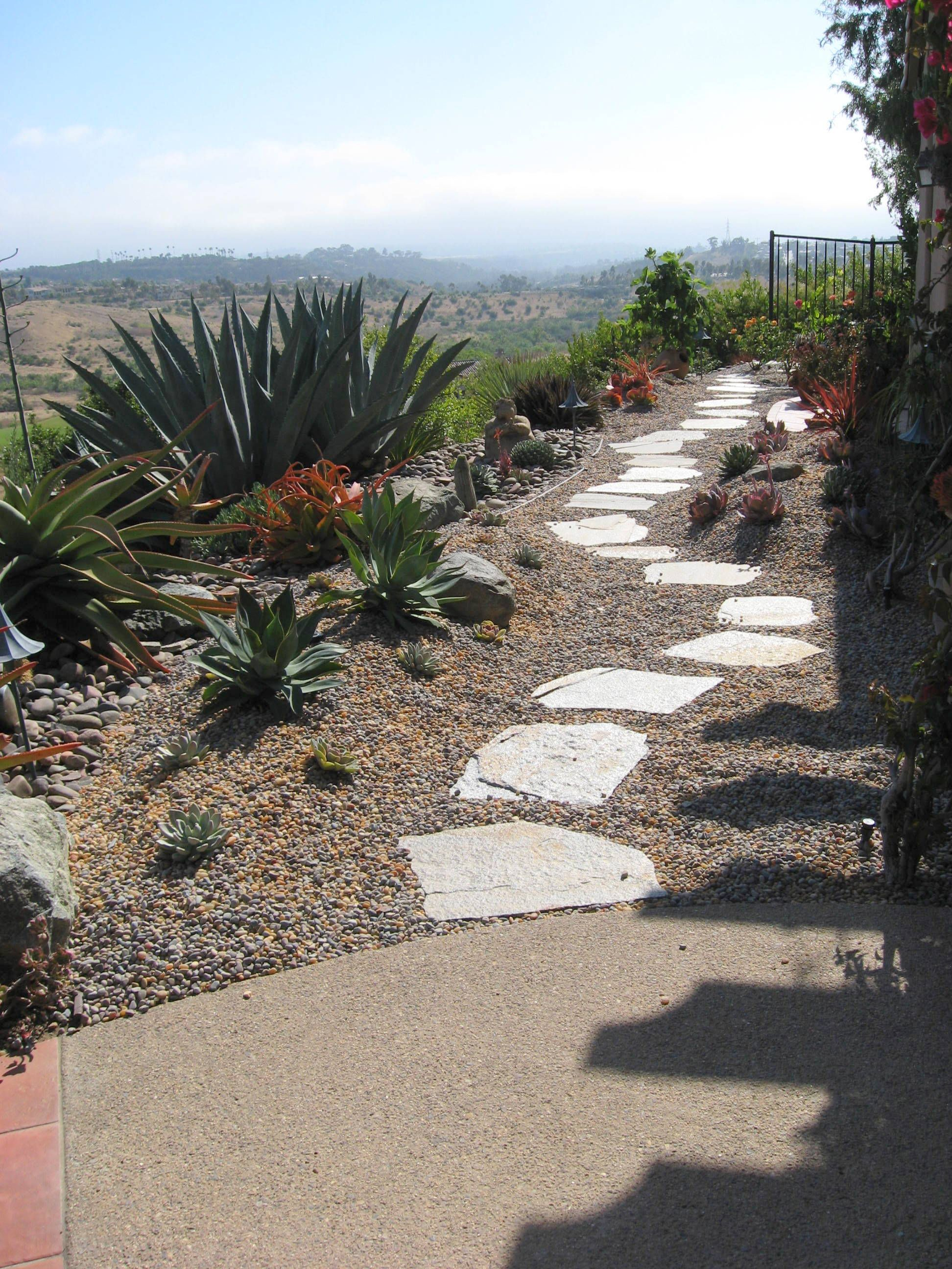 Large Succulents Surrounded By Gray Golden Pebble Mix And Stepping Stones