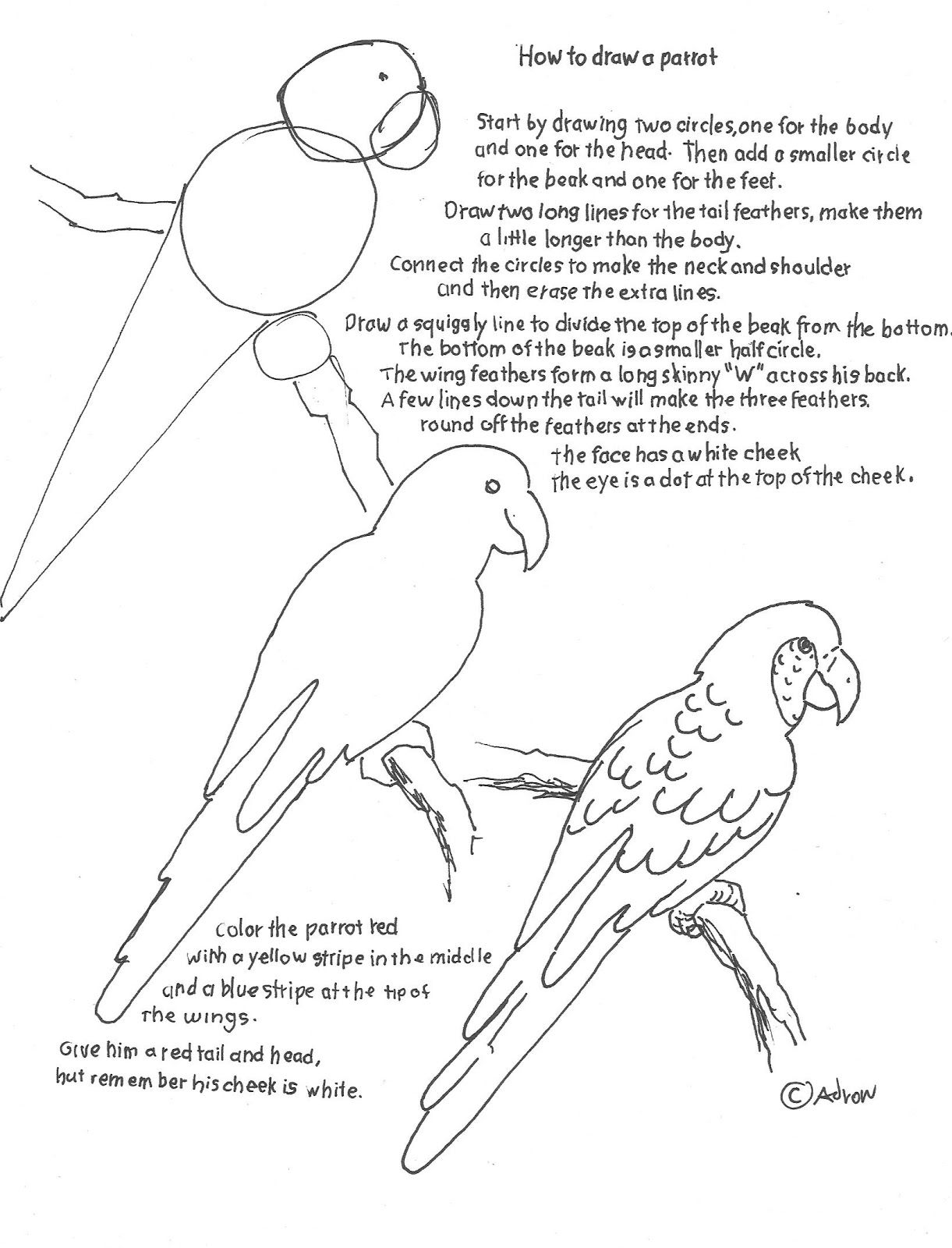How To Draw Worksheets Parrot