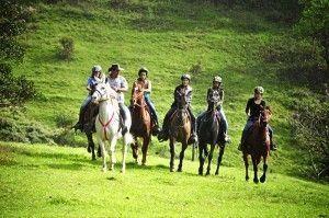 Beautiful horseback riding tours of Monteverde. Do it right -- book with Marvin at HorseTrek!