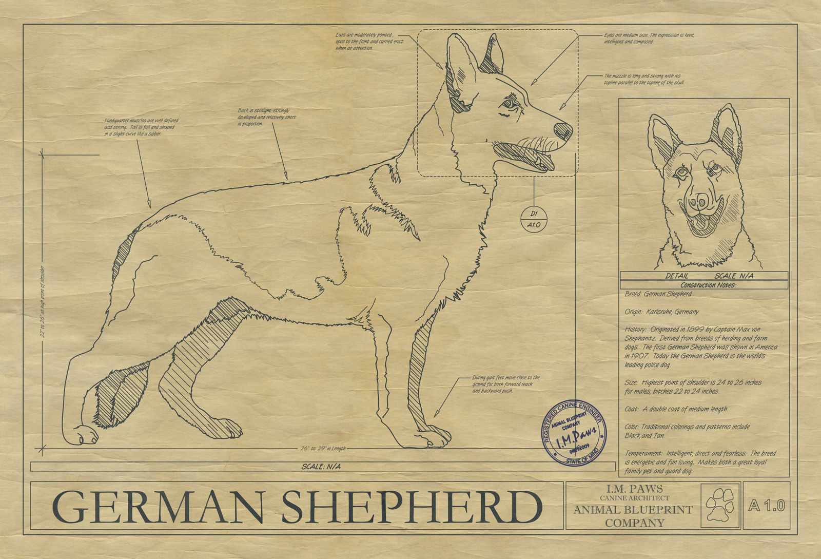 GERMAN SHEPHERD DRAWING   Holiday Gifts   Pinterest   German ...