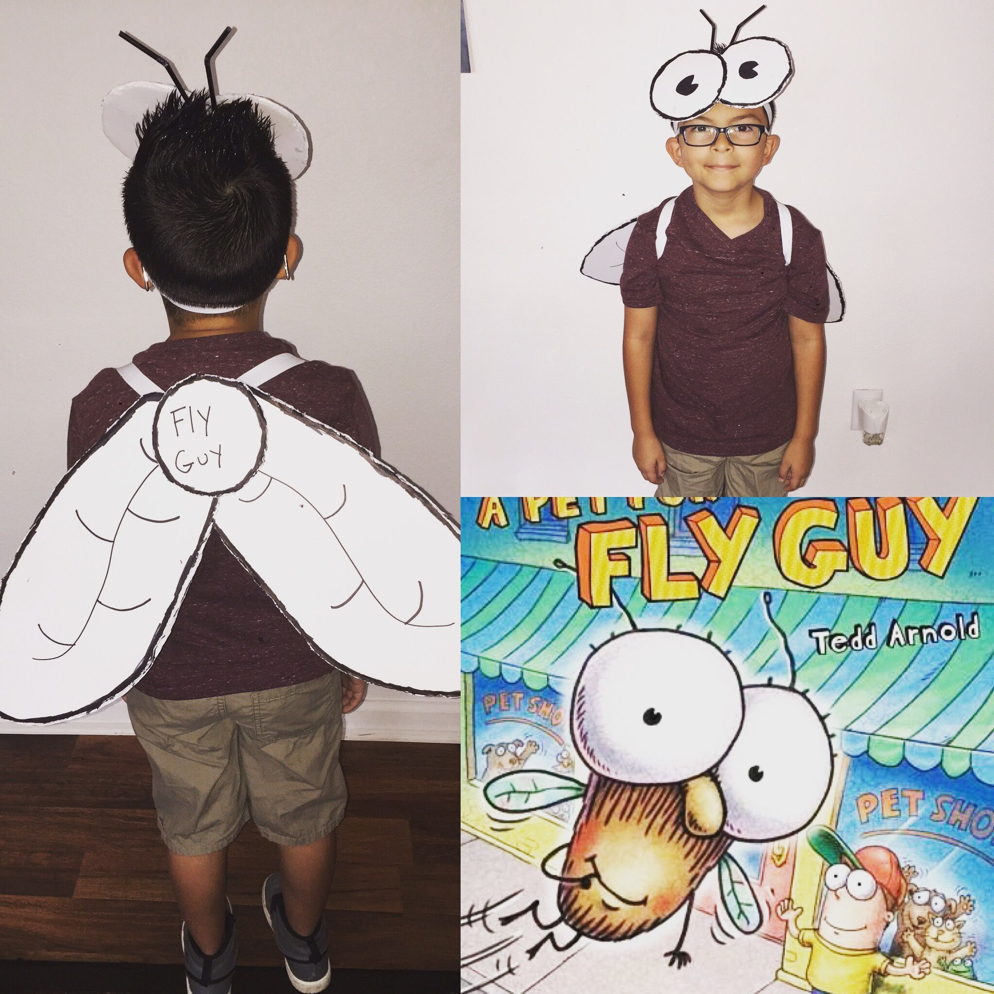 Diy Fly Guy Costume