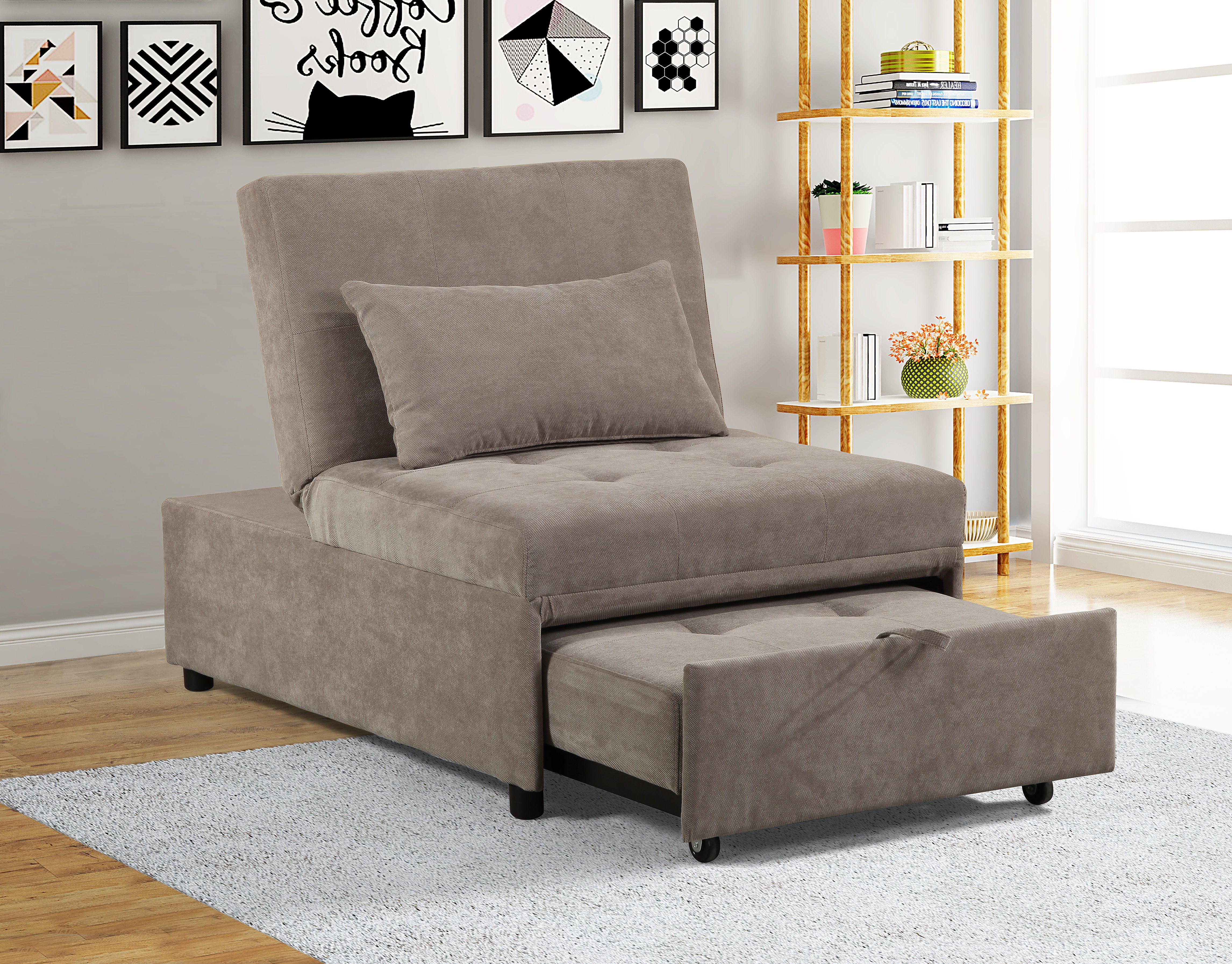 MiniMax Decor New Modern 2 in 1 Pullout Sofa Living room