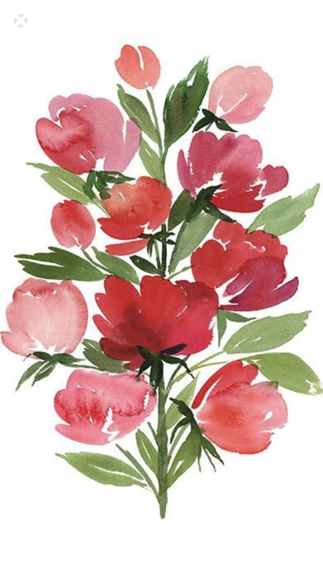 Pin by belgica wall on my love pinterest watercolor paintings