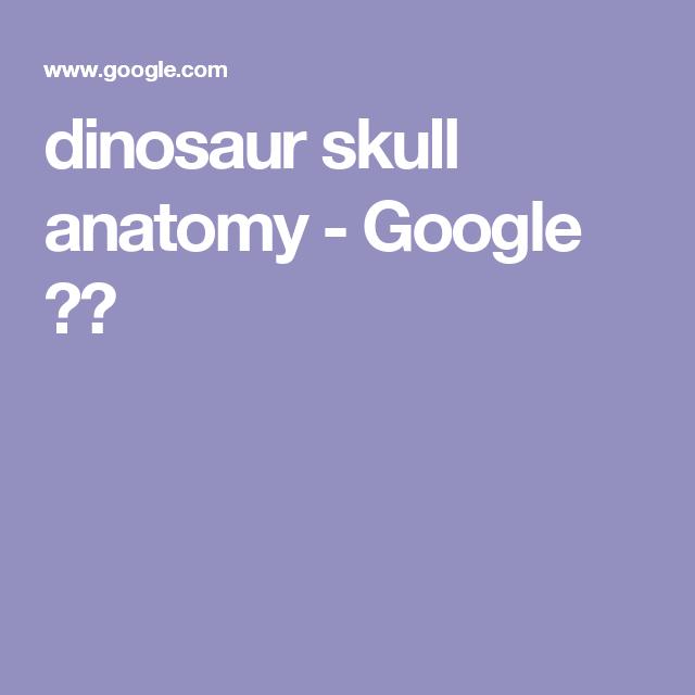 dinosaur skull anatomy - Google 搜索 | 这 | Pinterest | Skull ...