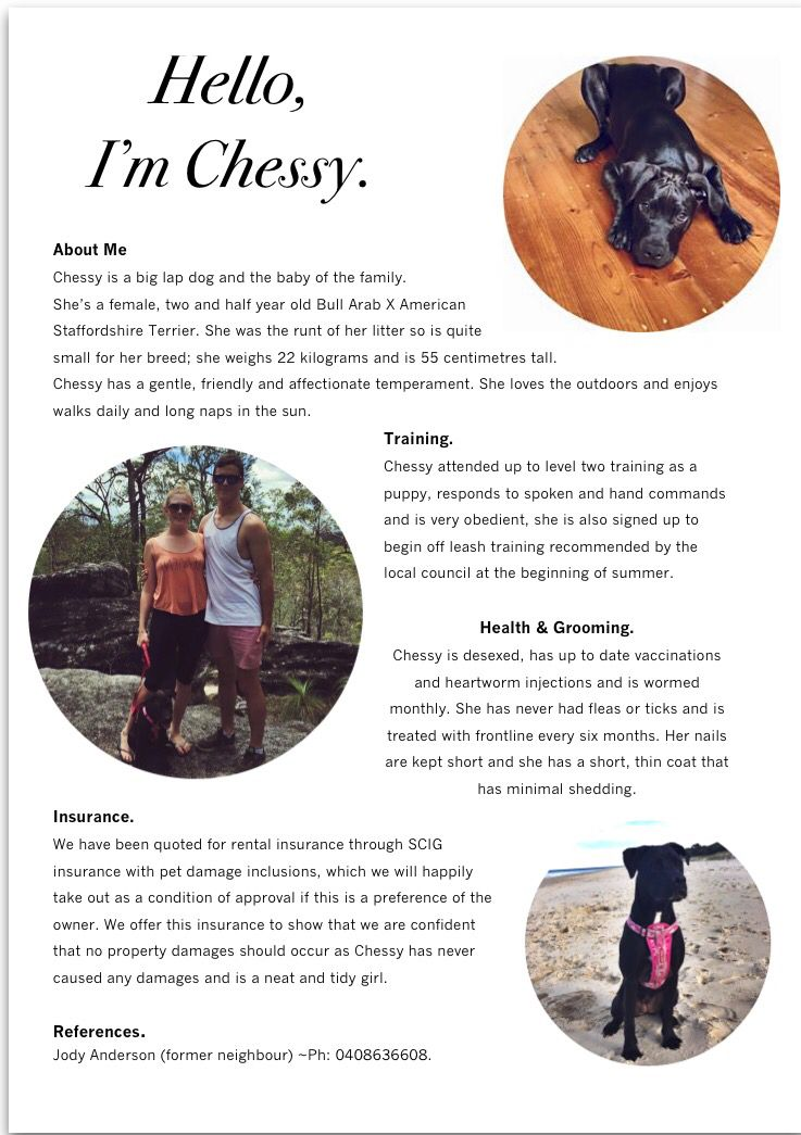 Pet Rental Resume Lap Dogs Pets Chessy