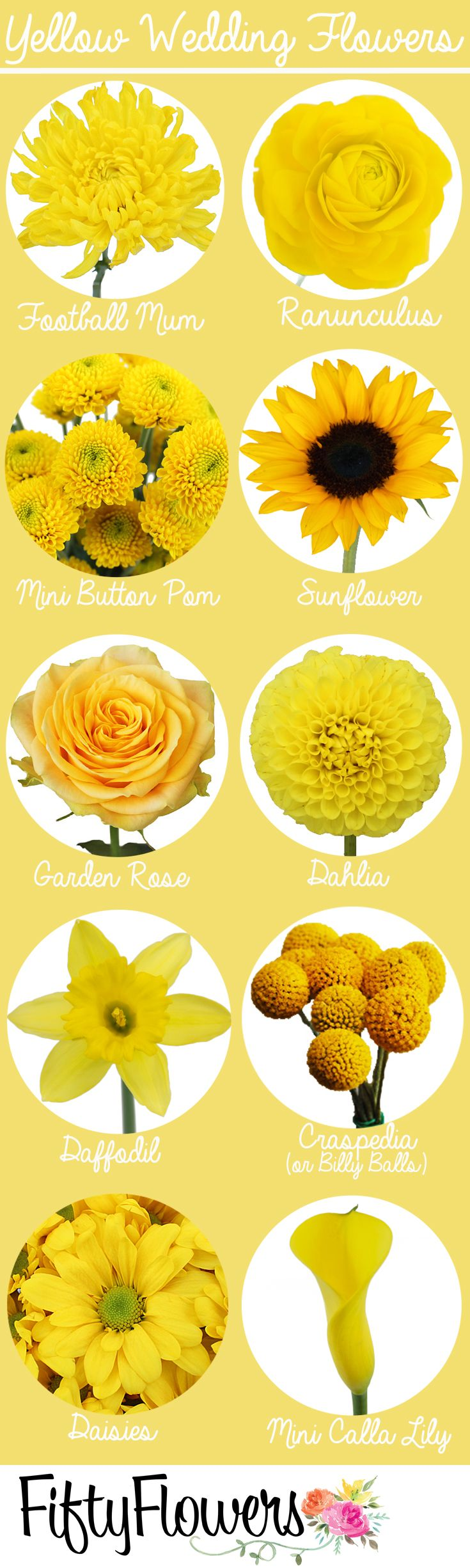 Find your sunny yellow wedding flowers at FiftyFlowerscom