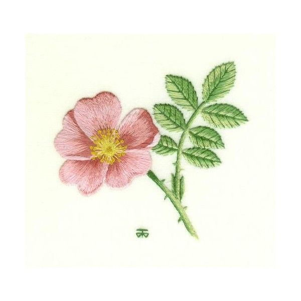 Wild Rose Needle Painting Embroidery Kit - a Hand Embroidery Design as an Alternative to Cross-stitch.