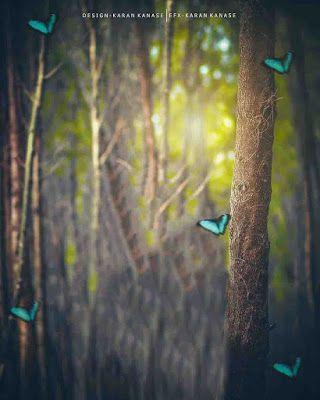 100 Hd Background Download 2020 Dslr Background Images Background Images Blur Background Photography Full hd background images download