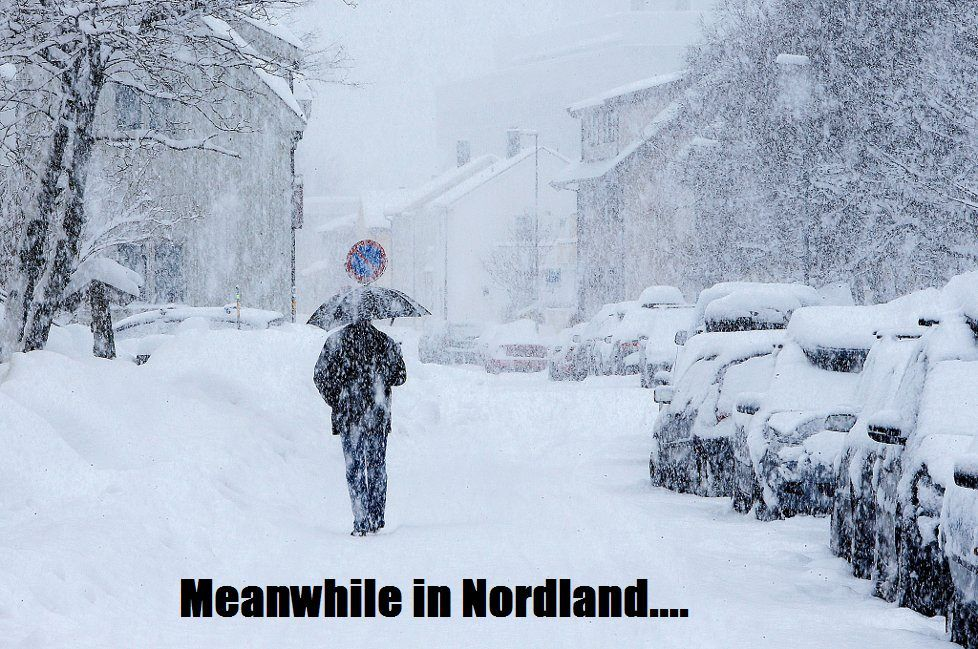 Meanwhile in Nordland