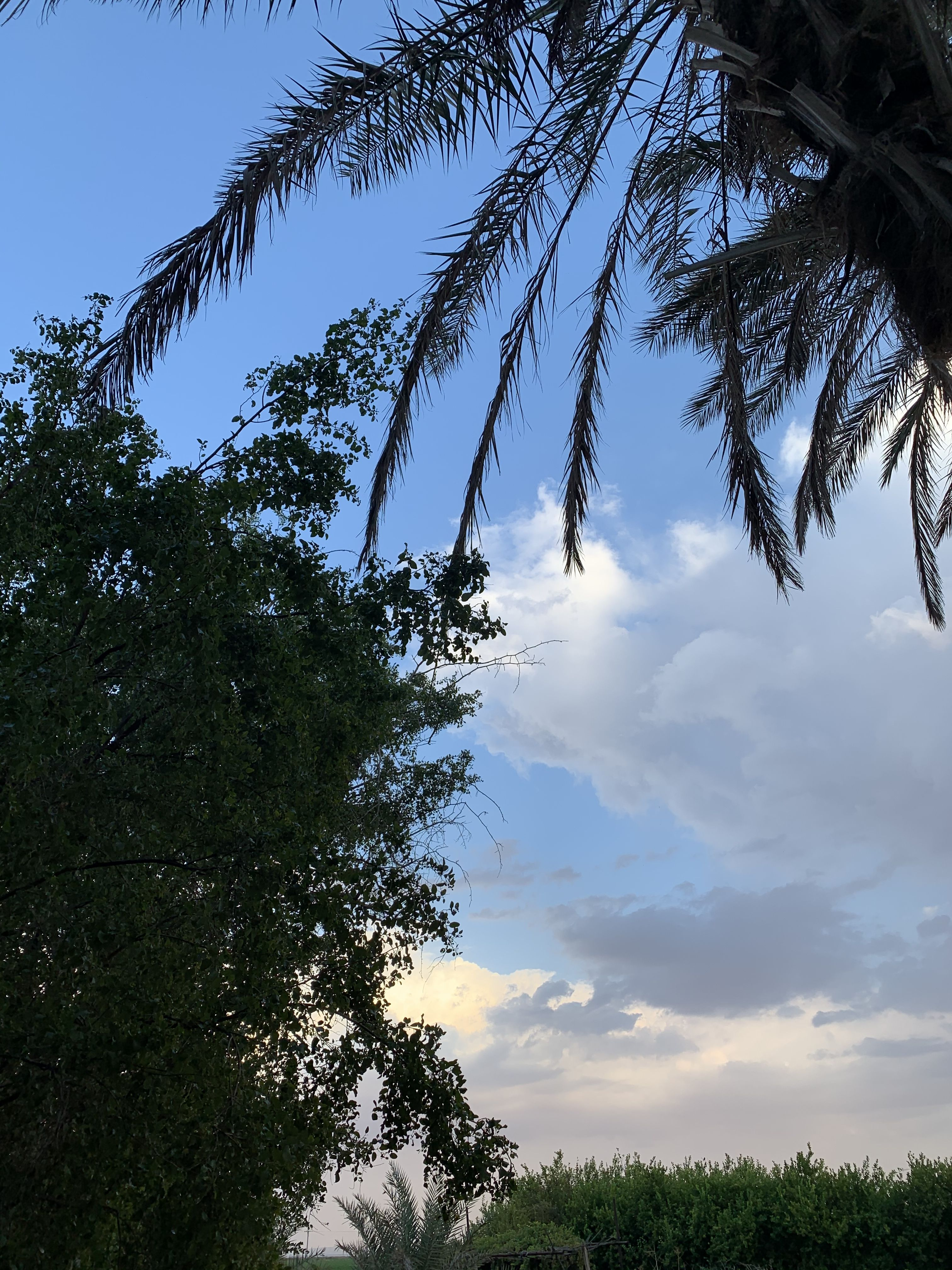 Sky غيوم غيمه سماء Cloud My Pictures Pictures Clouds
