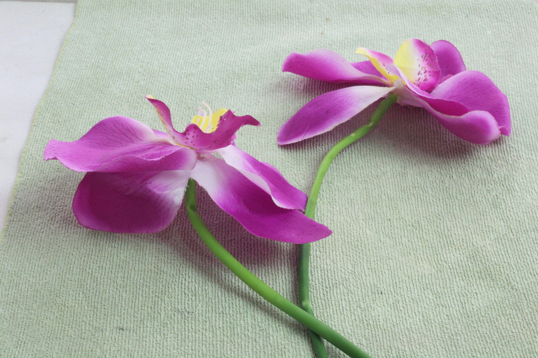 Clean Silk Flowers Silk Flowers Silk And Flower
