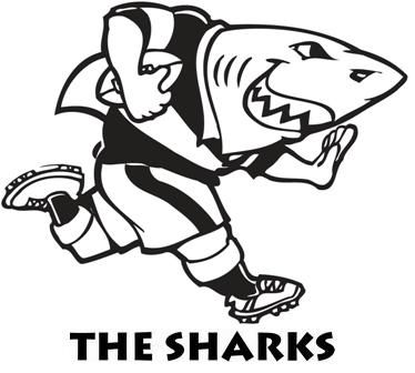 Image result for sharks super rugby logo