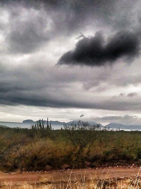 Reserva Nacional Estero del Soldado Guaymas Sonora