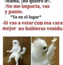 Memes En Espanol Chistosos Groseros Chistes 57 Trendy Ideas New Memes Memes Funny Faces Memes En Espanol