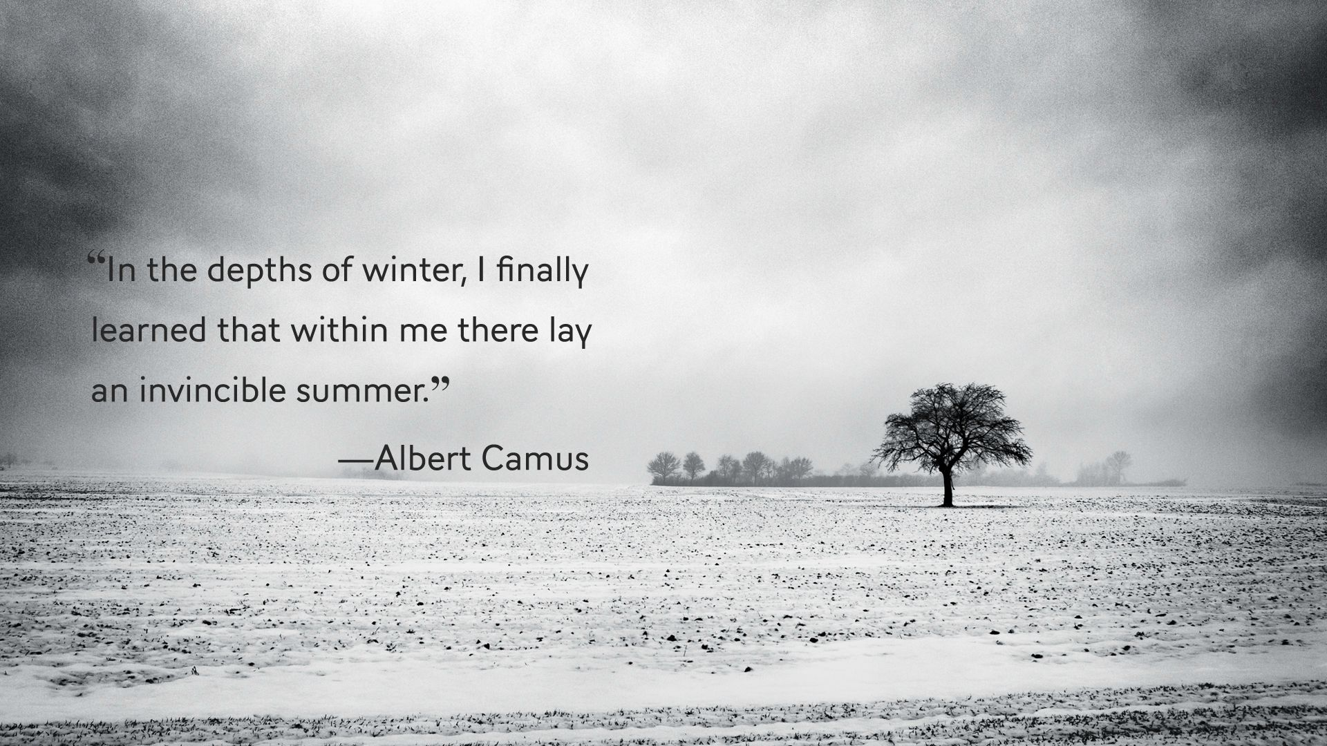 Albert camus quote about unique normal energy different - From Return To Tipasa By French Philosopher Albert Camus