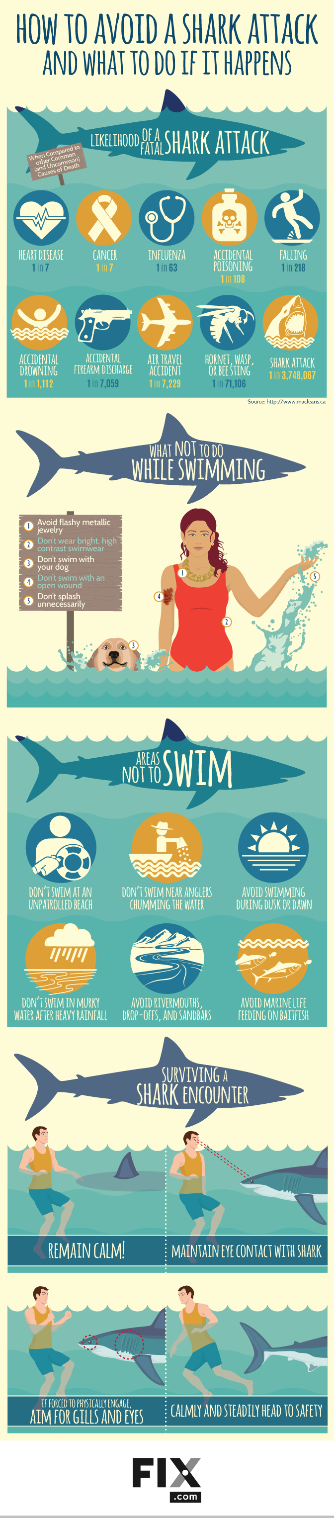 How to Avoid a Shark Attack And What to Do if it Happens #infographic