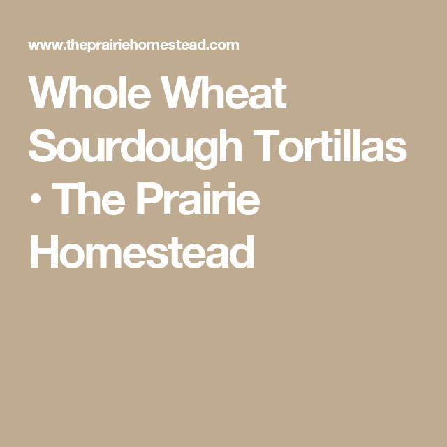 Whole Wheat Sourdough Tortillas • The Prairie Homestead ...