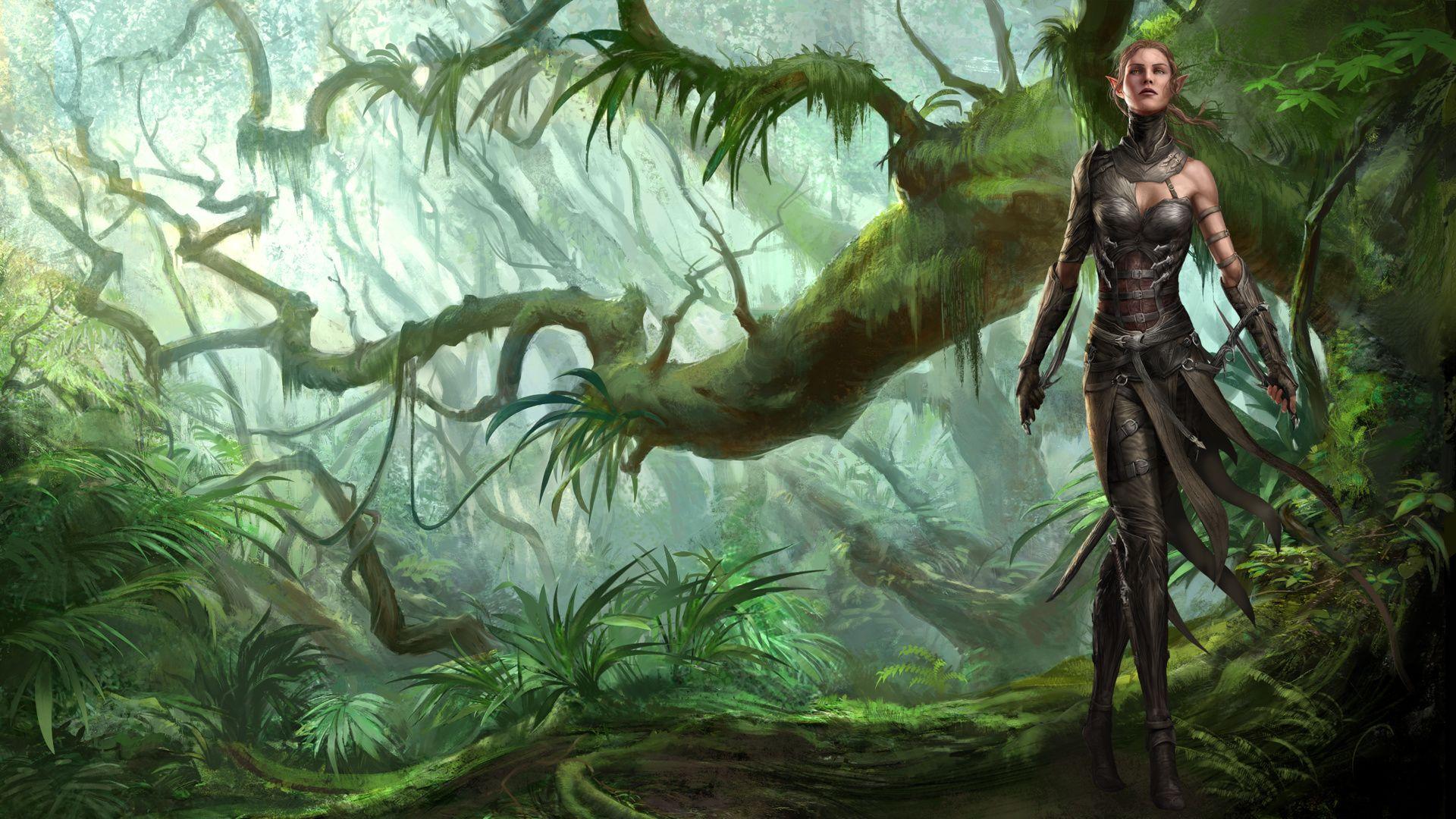 Video Game Characters Elves Divinity Original Sin 2 Video