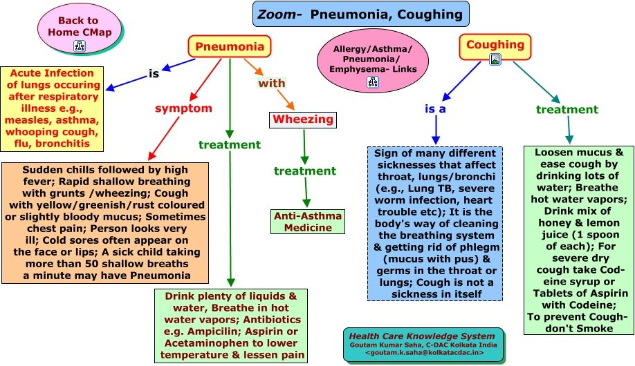Pneumonia Nursing Concept Map | Time Zones Map