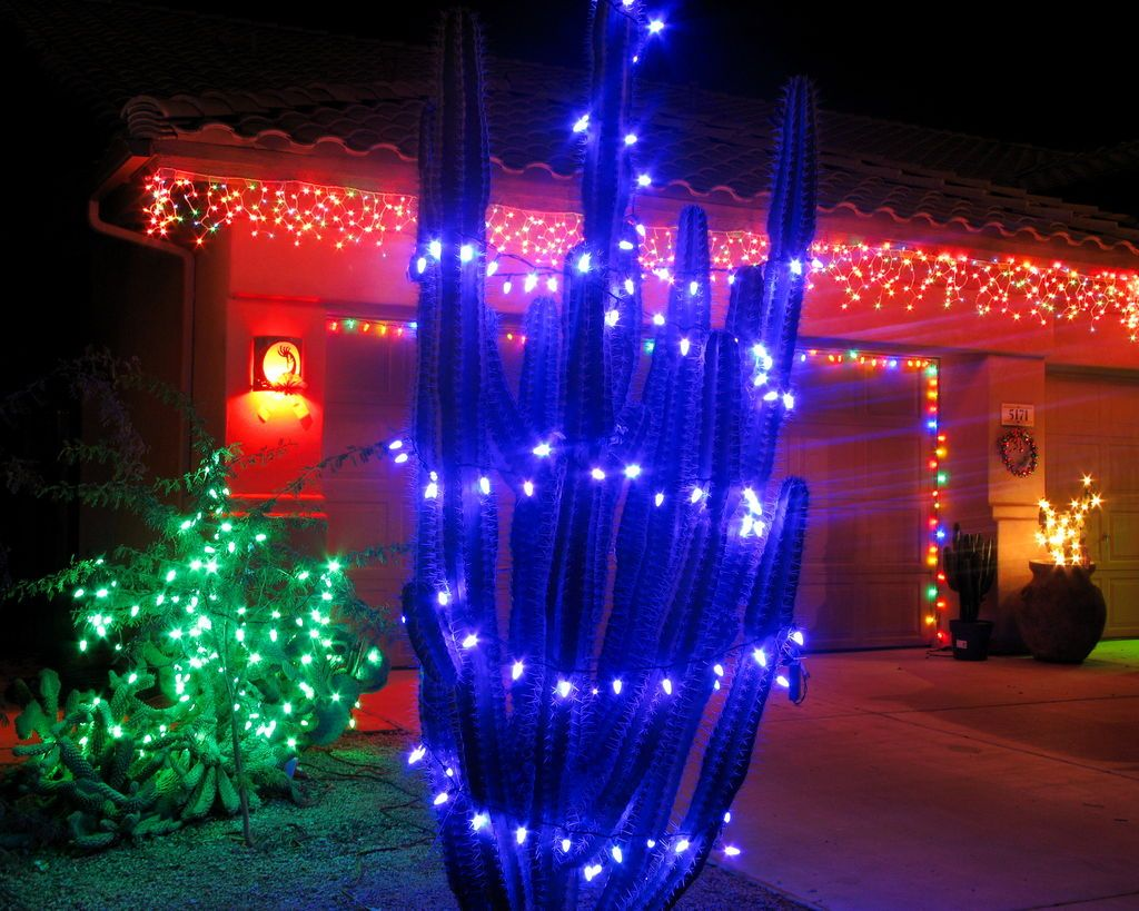 Christmas Cactus Jigsaw Puzzle In Christmas Christmas Lights For Sale Holiday Lights Christmas Cactus