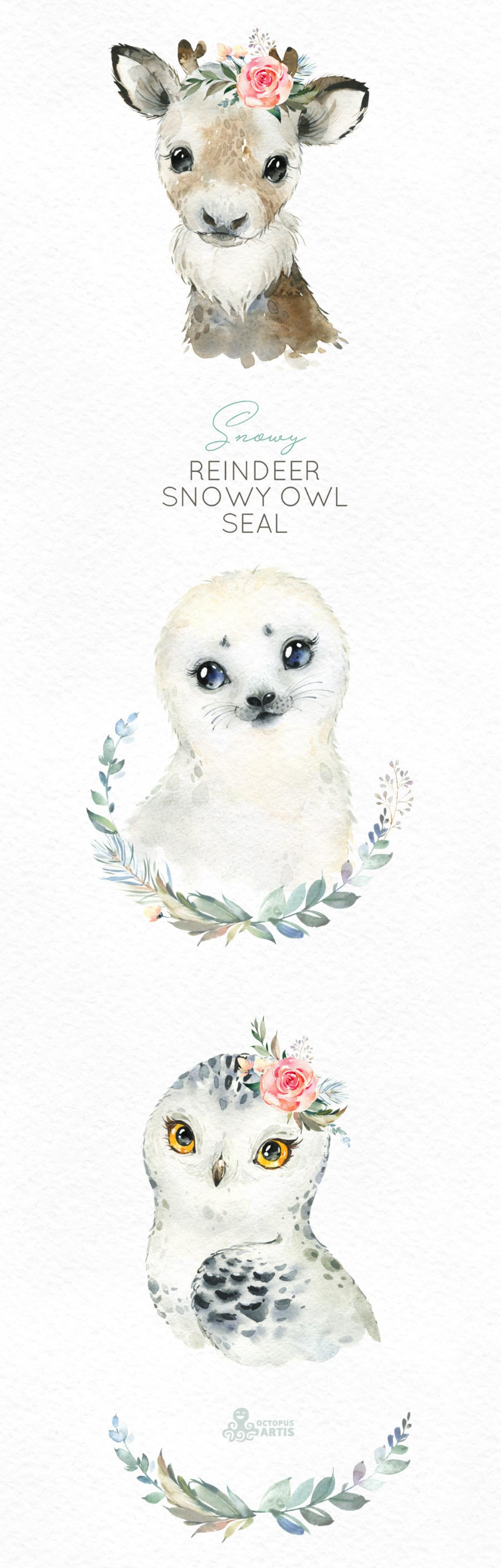 Snowy Reindeer White Owl Seal Watercolor little animals