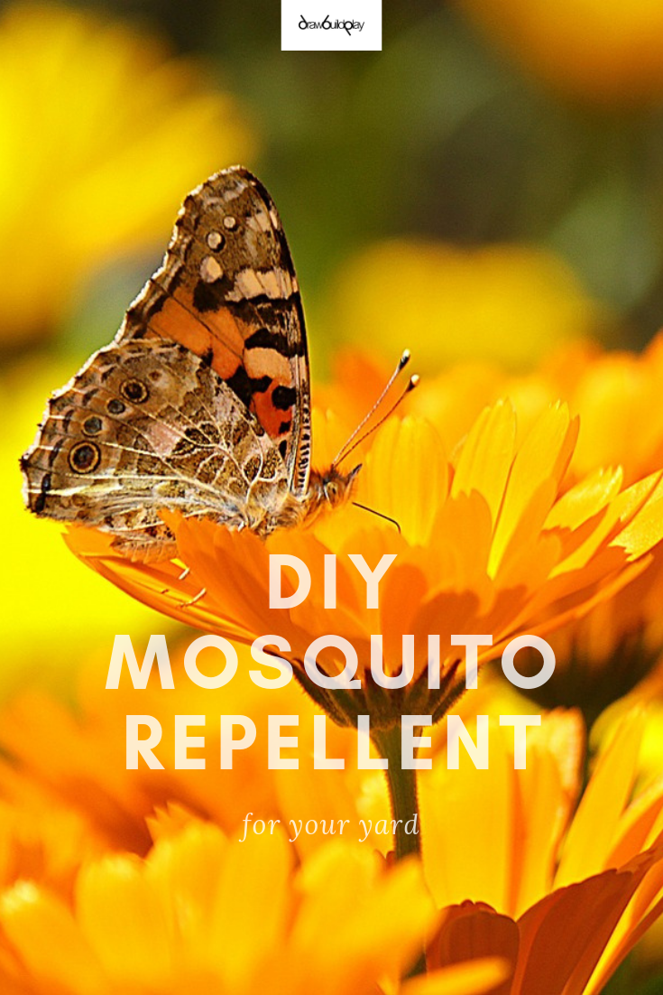 6 Best DIY Natural Mosquito Repellent Plants for your yard ...
