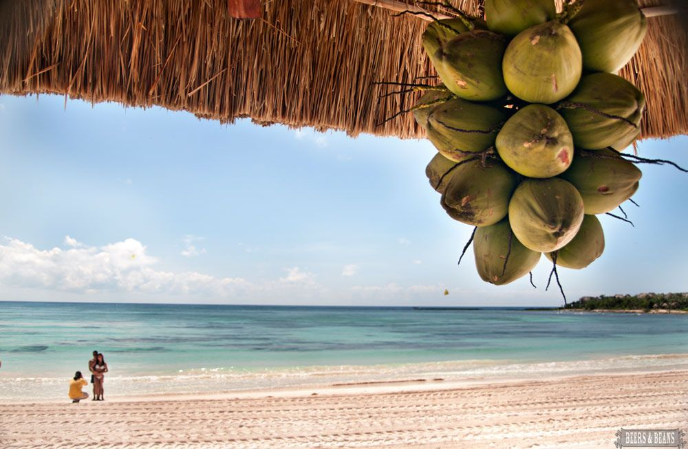 Riviera maya mexico will see you in less than a week