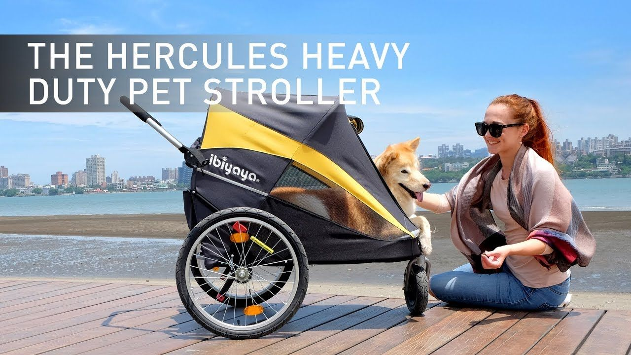 Hercules and many other topquality strollers from www